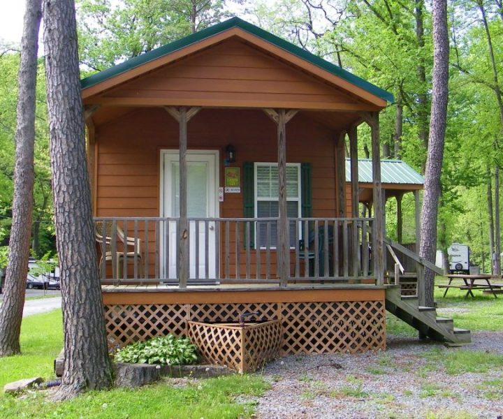 Deluxe Bunk Cabin 2 Bedrooms